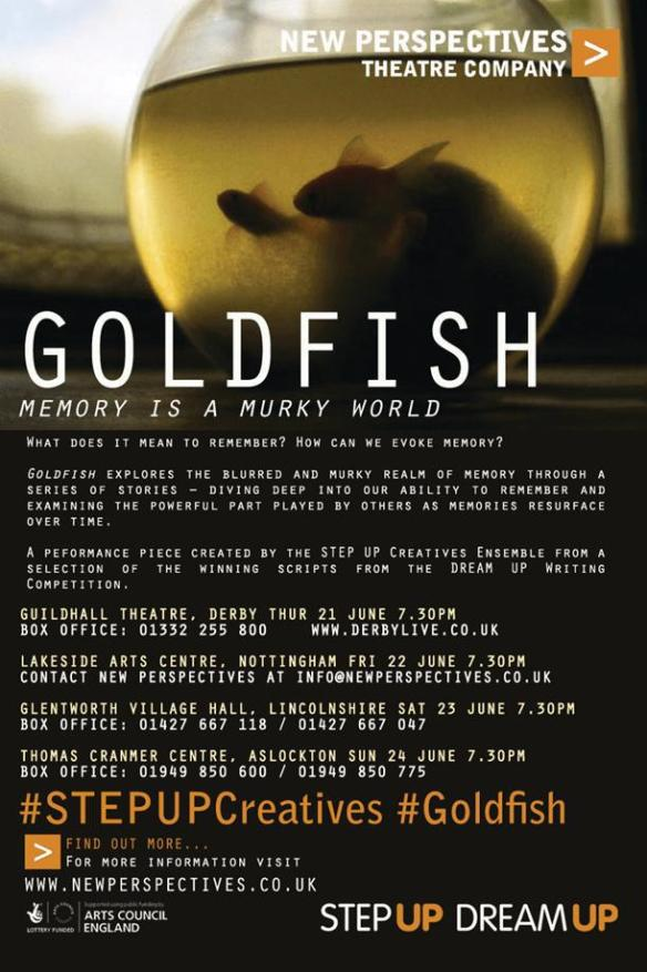 New Perspectives Goldfish poster